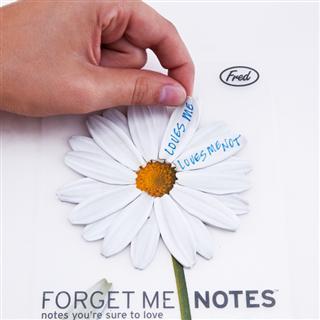 纯洁的雏菊款 花瓣型便签 便条纸  Fred and Friends