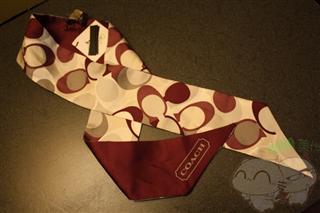 Coach Factory F97342 紫字C 丝巾 领巾 美国国现货