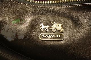 COACH F14304 麦迪逊系列 女士背包 可斜挎