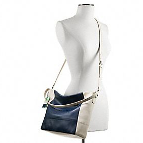 Legacy Weekend Colorblock Leather Shoulder Bag 22